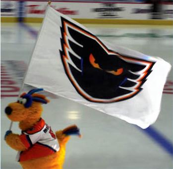 Large Format Flag - Spirit - Sports