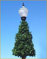 Lamppost Round Tree JT 522