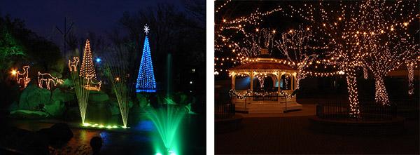 Rileighs Outdoor Decorations - Tree Lighting Installation