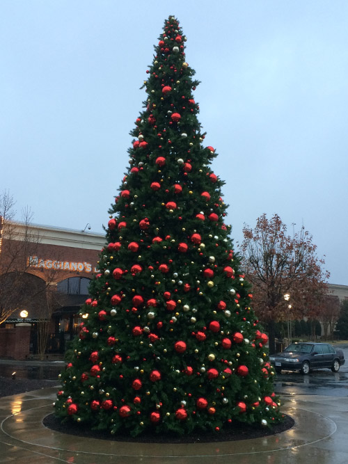 Paramount Christmas Trees - Christmas Ornaments
