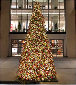 Outdoor Paramount Christmas Tree